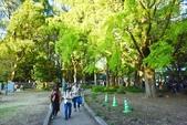 上野恩賜公園:上野公園 (14).jpg