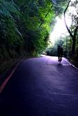陽明山健行趣:A003.jpg