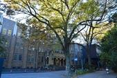 東京大學:東京大學 (10).jpg