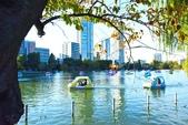 上野公園&不忍池:不忍池 (7).jpg