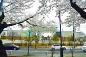 弘前公園(2):弘前公園2 (3).jpg