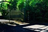 陽明山健行趣:A007.jpg