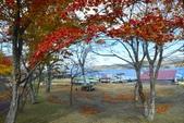 山中湖<2>:山中湖 (54).jpg