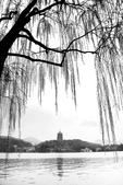 江南遊&杭州西湖:杭州西子湖 (16).jpg