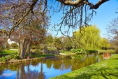 基督城雅芳河:紐西蘭雅芳河 (3).jpg