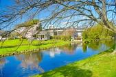 基督城雅芳河:紐西蘭雅芳河 (21).jpg