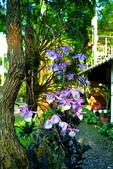 白石庭園:S005.jpg