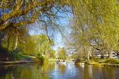 基督城雅芳河:紐西蘭雅芳河 (55).jpg