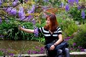 浪漫紫藤花園:A023.jpg