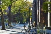 東京大學:東京大學 (26).jpg
