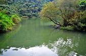 梅花湖:S003.jpg