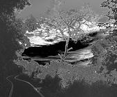 黑與白的健行:爬山黑與白 (10).jpg