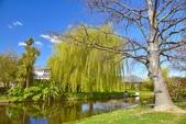 基督城雅芳河:紐西蘭雅芳河 (5).jpg