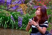 浪漫紫藤花園:A024.jpg
