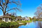 基督城雅芳河:紐西蘭雅芳河 (15).jpg