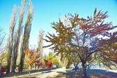 河口湖&八木崎公園:八木崎公園 (7).jpg