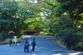 東京大學:東京大學 (15).jpg