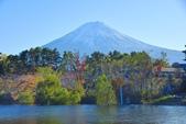 河口湖&八木崎公園:八木崎公園 (12).jpg