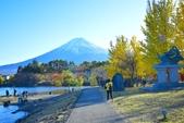 河口湖&八木崎公園:八木崎公園 (21).jpg