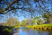 基督城雅芳河:紐西蘭雅芳河 (49).jpg