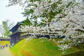 弘前公園(2):弘前公園2 (20).jpg
