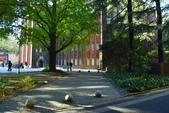 東京大學:東京大學 (21).jpg