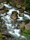 溪澗釣魚:S014.jpg