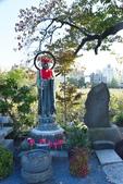 上野恩賜公園:上野公園 (3).jpg