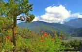 棲蘭山莊遊:A008.jpg