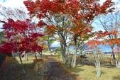 山中湖<2>:山中湖 (53).jpg