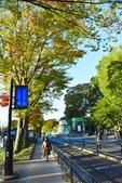 上野恩賜公園:上野公園 (11).jpg