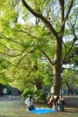 上野恩賜公園:上野公園 (16).jpg