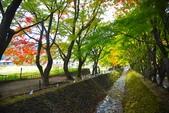 河口湖&久保田一竹美術館:一竹美術館 (1).jpg