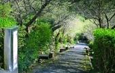 棲蘭山莊遊:A015.jpg