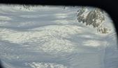 紐西蘭福克斯冰川:福斯冰河直升機拍攝 (15).jpg