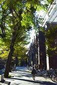 東京大學:東京大學 (25).jpg