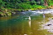 溪澗釣魚:S005.jpg