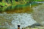 溪澗釣魚:S006.jpg