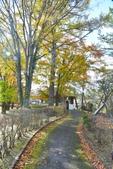 山中湖<2>:山中湖 (50).jpg