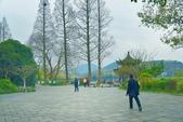 江南遊&杭州西湖:杭州西子湖 (5).jpg