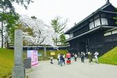 弘前公園(2):弘前公園2 (21).jpg