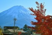河口湖&八木崎公園:八木崎公園 (2).jpg