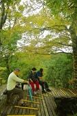 太平山山毛櫸:太平山 (18).jpg