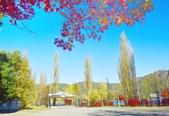 河口湖&八木崎公園:八木崎公園 (4).jpg