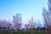 紐西蘭天空塔:紐西蘭 (13).jpg
