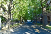東京大學:東京大學 (4).jpg