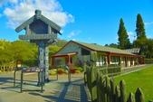 紐西蘭  毛利村:毛利村 (9).jpg