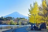 河口湖&八木崎公園:八木崎公園 (20).jpg