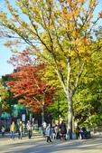上野恩賜公園:上野公園 (9).jpg