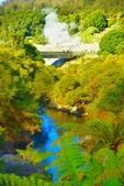 紐西蘭  毛利村:毛利村 (16).jpg